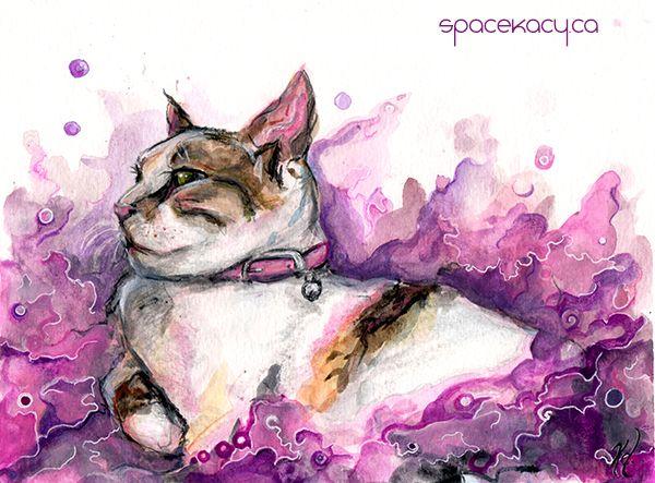 Cat portrait by Kacy Doucet, surreal pink pet portrait