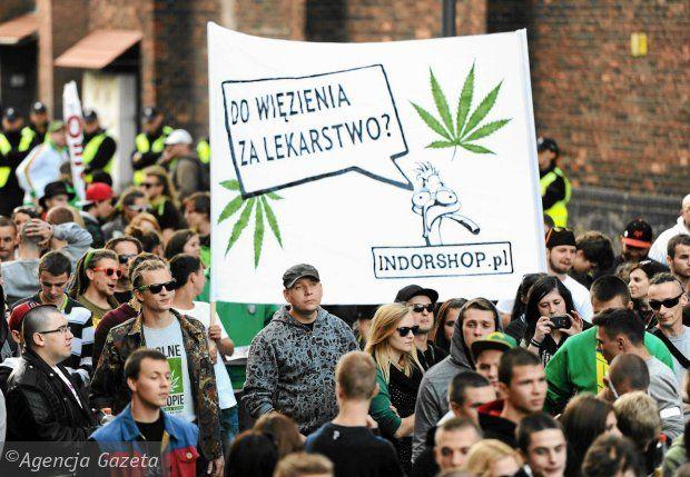 Legalna Marihuana. Jakie skutki przyniosła na świecie?