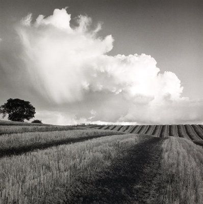 Fine Art Print of Large White Cloud near Bilsington by Fay Godwin