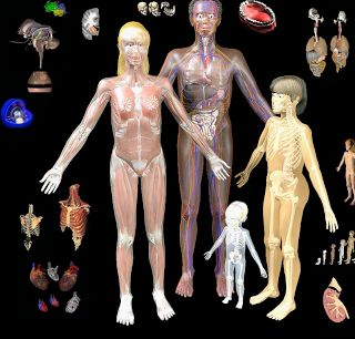 BodyMaps- A Great Tool to Explore Human Body in 3D ~ Educational Technology and Mobile Learning