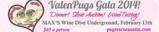 ValenPug! Pug Rescue of Austin | Adopt a Pug