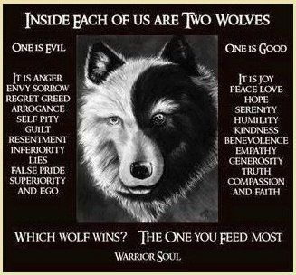 Indian Wisdom – Inside each of us are two wolves