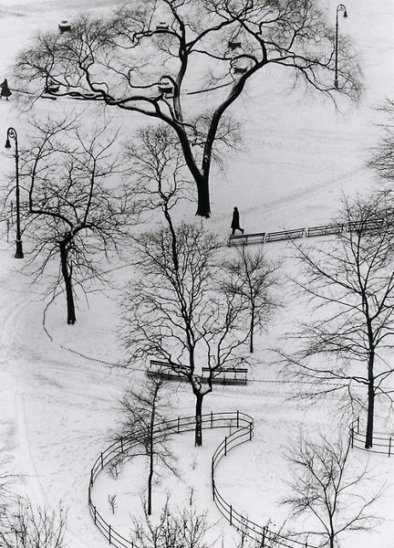 March, 1: Have a beautiful day (Erno Vadas - Snow Park)