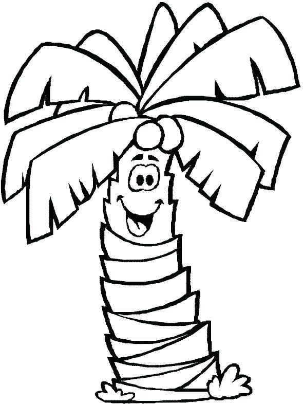 590x786 Palm Tree Coloring Pages For Kids Tree Coloring Page Leaf Coloring Page Palm Tree Clip Art