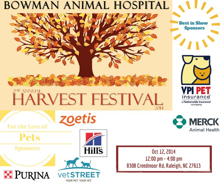100 ideas to try about events at bowman animal hospital