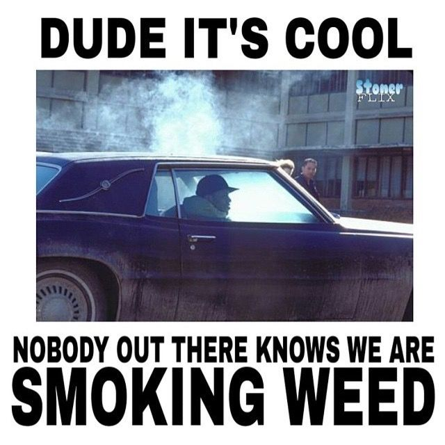 Top 15 Hilarious Marijuana Memes of the Week (August 16 – 23)