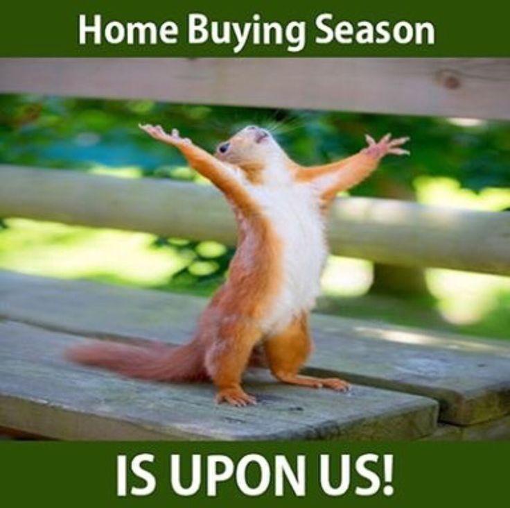 Scottsdale homes for sale!