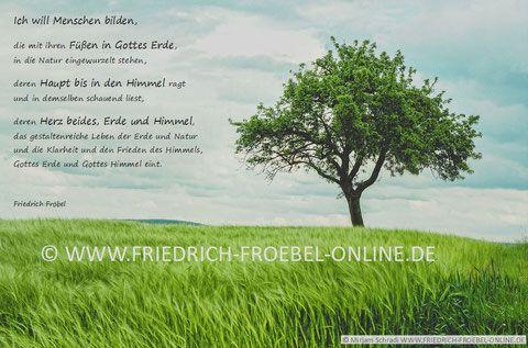 Kindergarten Poster mit Fröbelspruch / Zitat: Ich will Menschen bilden...