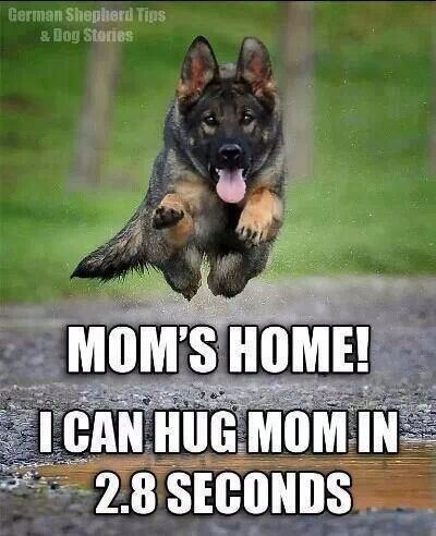 This is why a dog is good medicine for anxiety - unconditional love (and enthusiasm!) - it's contagious!