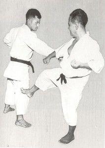 10 Differences Between Okinawan Karate & Japanese Karate   KARATE by Jesse