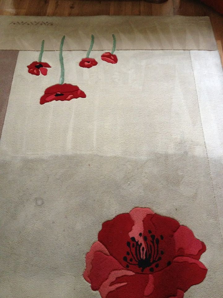 Here is an example of a rug being cleaned.  This particular rug had been invaded by many children over a few years.