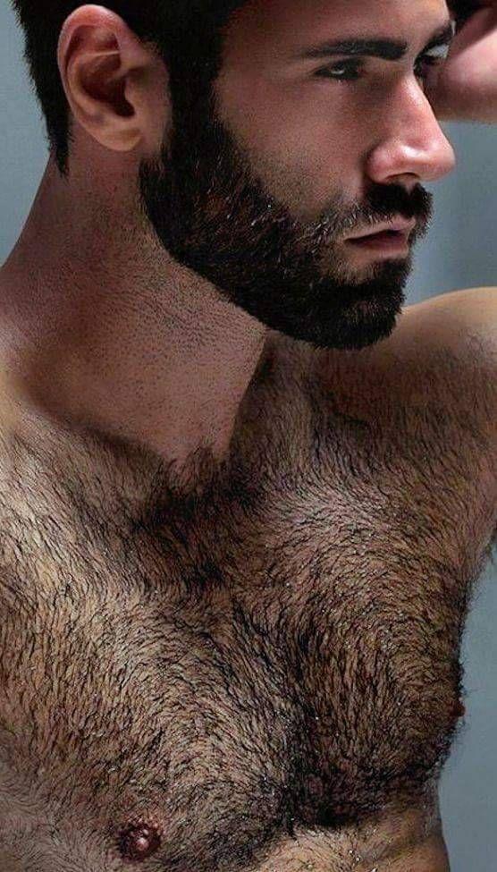 Bearded Men, Hairy Men, Beard No Mustache, Gay, Muscle Bear, Man