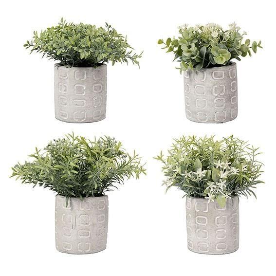Lot de 4 plantes grasses vertes pots cylindriques moncornerdeco d co ma son d y - Plantes grasses en pot ...