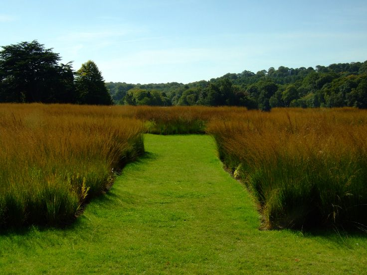 Trentham gardens piet oudolf 39 s rivers of grass grasses for Gardening with grasses piet oudolf
