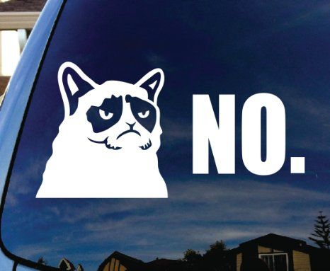 Best Car Window Decals Images On Pinterest Car Window Decals - Vinyl decal cat pinterest