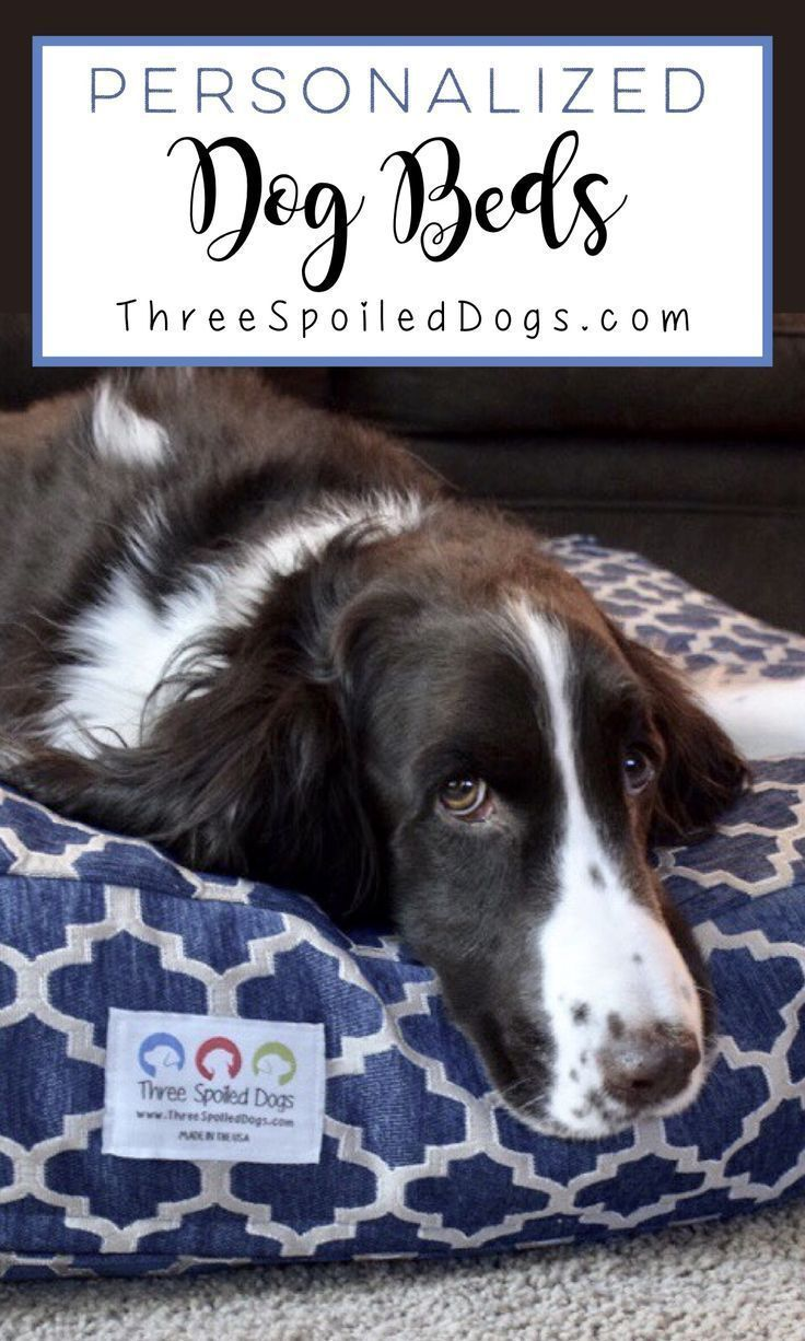 Three Spoiled Dogs Boutique In 2020 Personalized Dog Beds Dog Person Spoiled Dogs