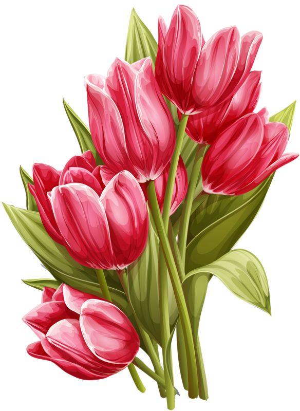 картинки рисунки тюльпанов вкусное как холодном