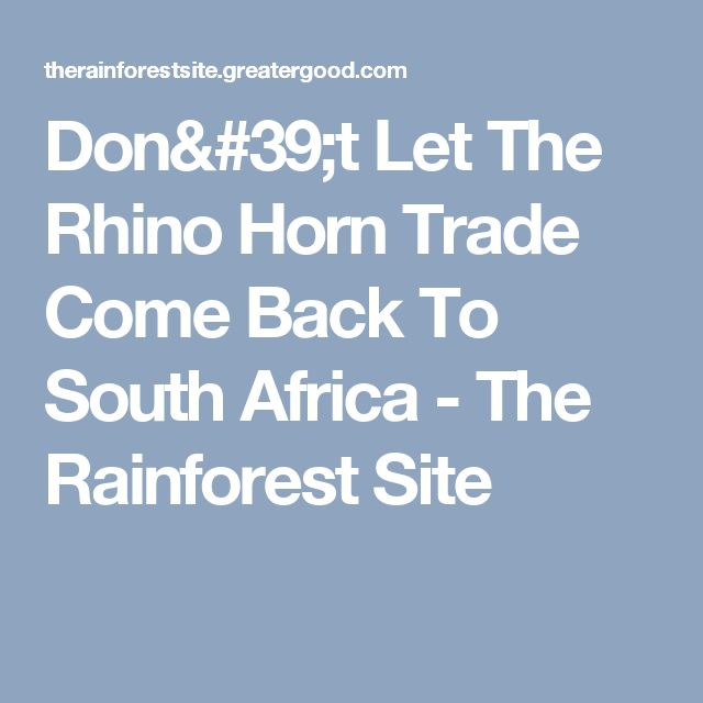 Don't Let The Rhino Horn Trade Come Back To South Africa - The Rainforest Site