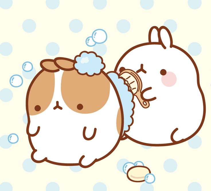 1000+ images about Molang on Pinterest | Sky, Subscription ...