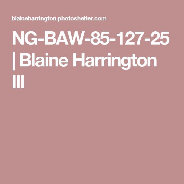 NG-BAW-85-127-25 | Blaine Harrington III