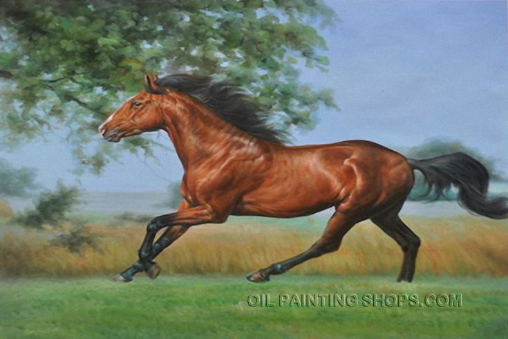 Amazing Oil Painting Reproduction African Animal Famous