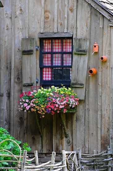 Country window all abloom...love the ceramic birdhouses and the red gingham curtains