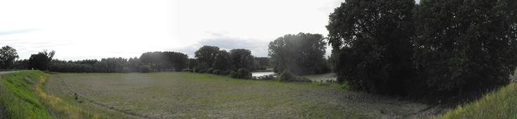 Bodrio Lazzaretto - Stagno Lombardo - Provincia di Cremona - Maggio 2013