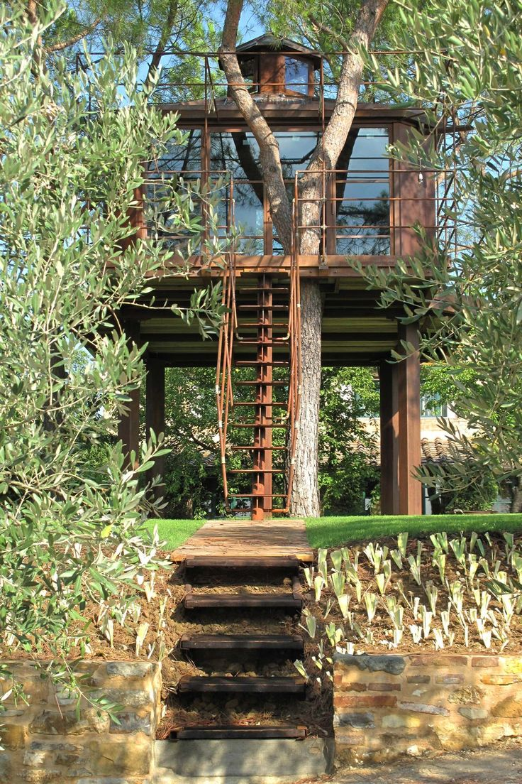 Forget the ground floor, live the high life in a luxury tree house - splinter free