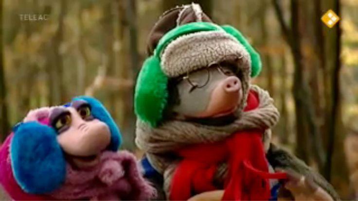 Thema: Winter. De kachel van Moffel en Piertje wilde de vorige avond niet branden. Daarom gaan ze samen met Arie naar een schoorsteenveger.