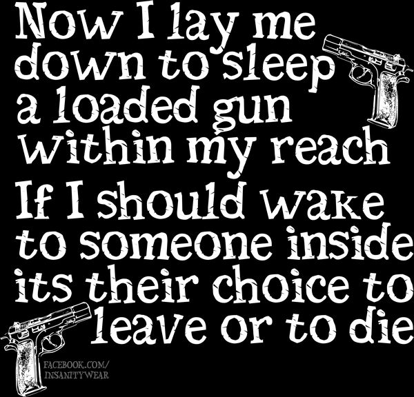 Gun Owner Prayer Now I lay me down to sleep... a loaded gun within my reach Lots of other 2nd amendment & gun related stuff on my Facebook page - https://www.facebook.com/InsanityWear