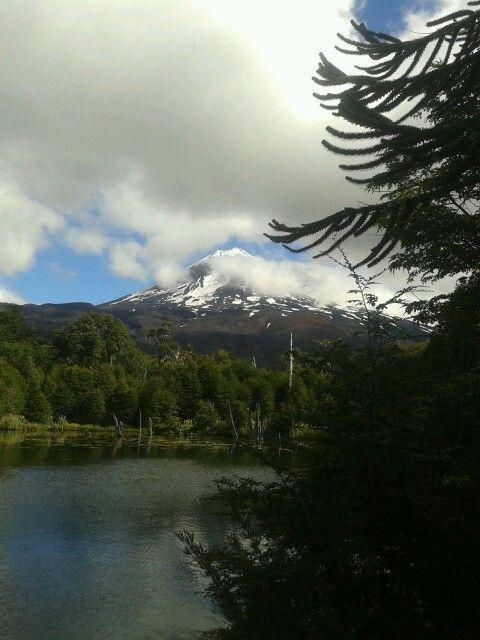 Laguna Captren  Parque Nacional Coguillio