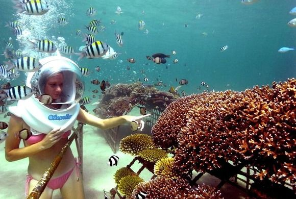 Bali Underwater Seawalking Experience ~ discover an amazing underwater world without needing a scuba license!!
