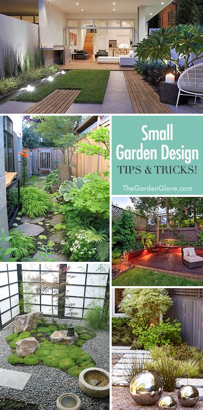 Small Garden Design • Great Ideas, Tips and Tricks!