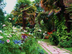 The delightful sub tropical gardens at Abbotsbury Gardens, England