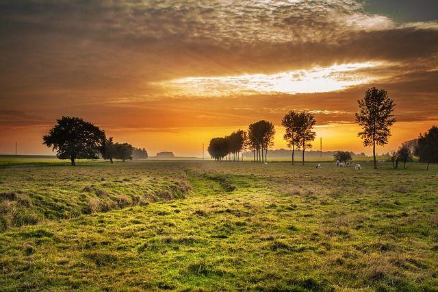 Countryside, Twilight, Sunset, Dusk, Dawn, Landscape