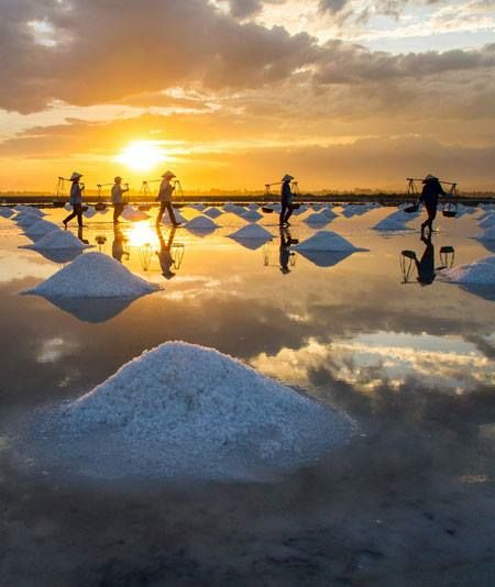 Harvesting salt - Vietnam