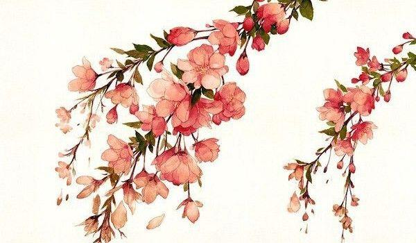 Как нарисовать цветы акварелью поэтапно | Lessdraw
