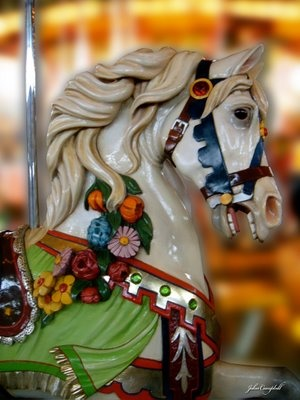 Colorful Carousel Horse dances around in a circle