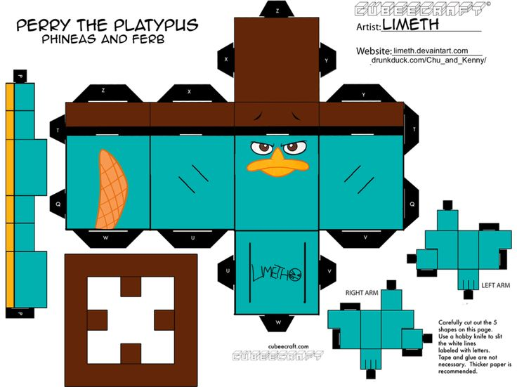 Best 25 Perry the platypus ideas on Pinterest  Phineas and ferb