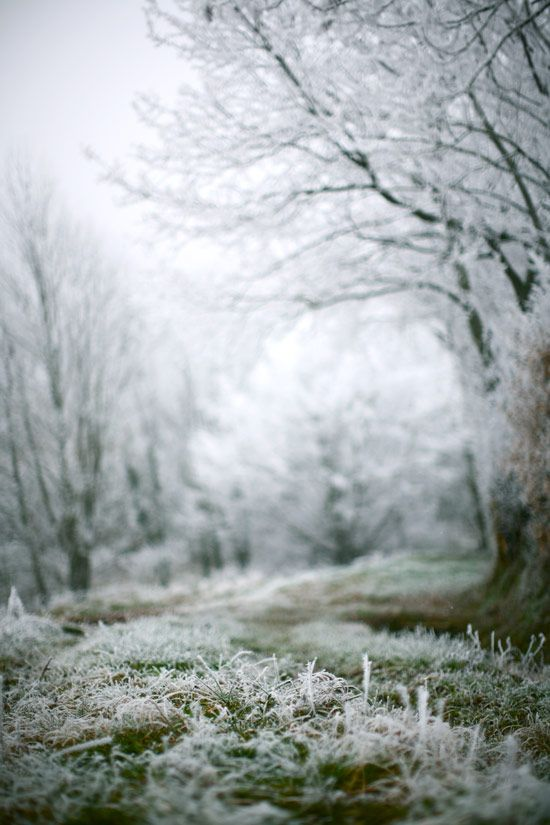 The first winter frost, time set, get up before the sun. Be there when the magic happens