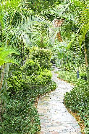 Path in tropical garden by Ferguswang, via Dreamstime