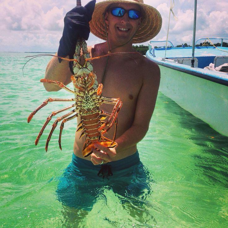 West Of US1 South. Content Keys. Bring Gloves! #lobster