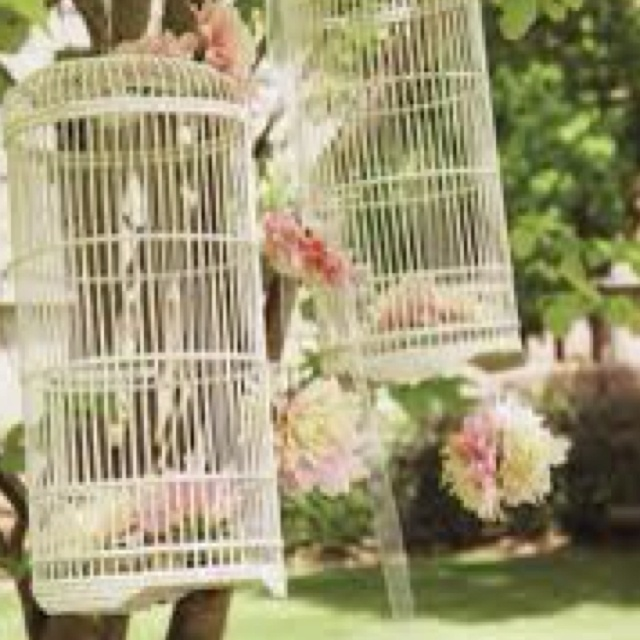 Vintage decor. Love the bird cages