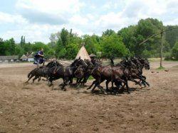 The legendary Puszta Five, http://bestbudapesttourguides.com/en/choose_a_guide-page-3/kecskemet-destination-52/ildikovarga-guide-34/the_hungarian_puszta___trip_to_kecskemet-tour-276/