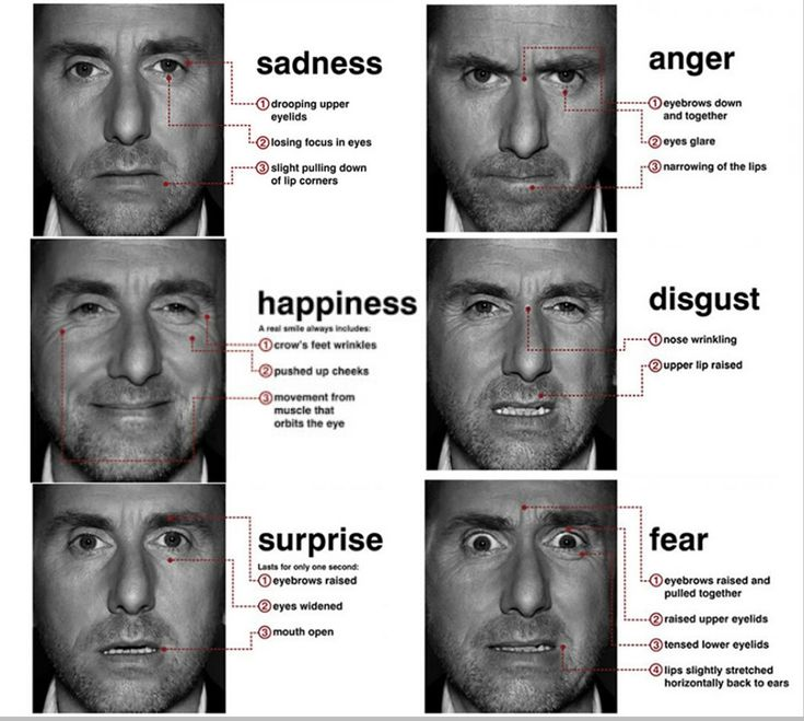 Research by Dr. Paul Eckman tells us that there are 6 basic facial expressions that even blind people make the same faces to express the same emotions. These are: surprise, fear, disgust, anger, sadness and joy. While the facial expression of joy and sadness are distinct, fear and surprise share the wide open eyes. Similarly, anger and disgust share the wrinkled nose.