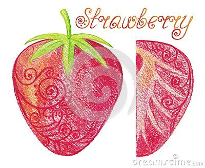 Hand drawn strawberry: whole and half. Vector illustration