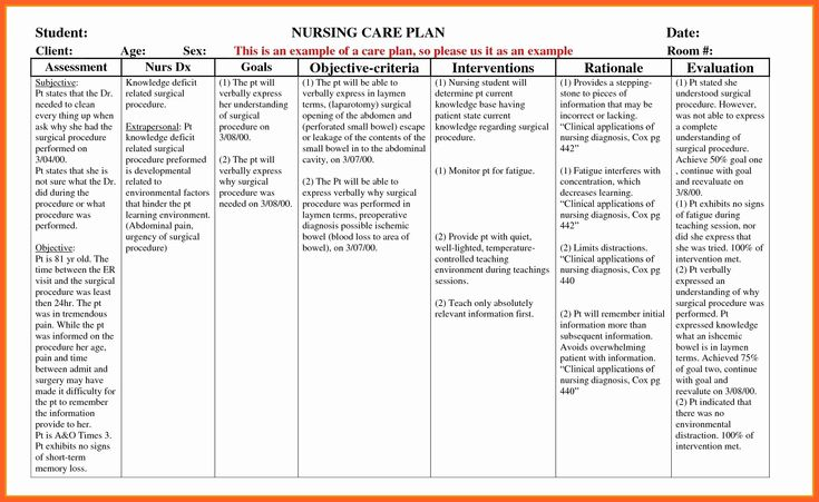 Nursing Teaching Plan Template Awesome Example Care Plan ...