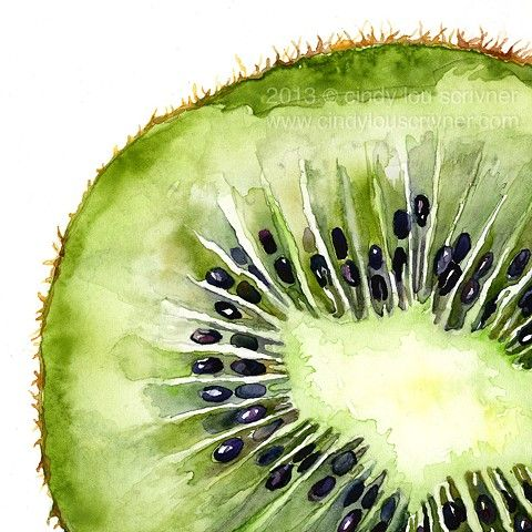 fruit watercolor - Buscar con Google