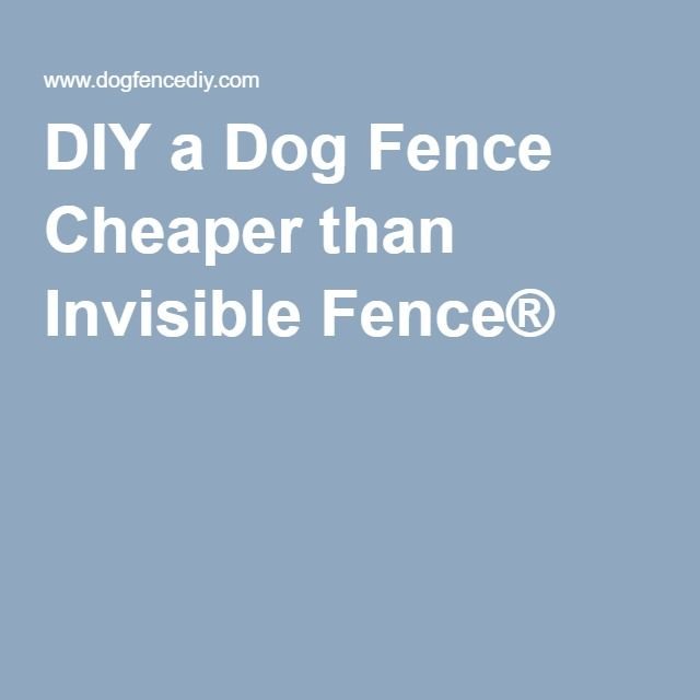 diy a dog fence cheaper than invisible fence u2014