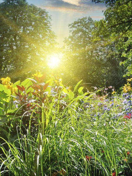 Der Frühling ist da: Das Wetter zeigt sich von seiner schönsten Seite!Sommer, Sonne, Sonnenschein – in diesem Jahr ist der Frühling mehr